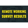 Remote working survey report